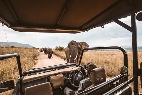 african-safari-tanzania